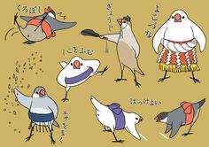 tsujisaoricp: 文鳥すもう部屋 Bird Illustration, Character Illustration, Art Auction Projects, Funny Birds, Little Birds, Cute Characters, Bird Art, Beautiful Birds, Funny Cute