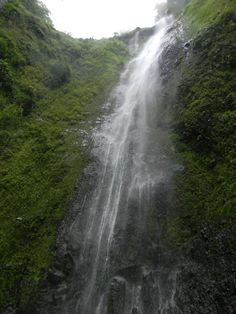This is a picture of the San Ramón waterfall. This waterfall is located on Ometepe, an island, on the southern side of the Maderas Volcano. Ometepe, Managua, Natural Waterfalls, San Ramon, Nutrition Education, Honduras, Central America, Granada, Travel Around The World