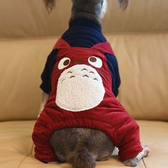 Find More Jumpsuits & Rompers Information about 1pc Dog Clothes Totoro Warm Fleece Sweater Rompers Wool Coat Splicing Jumpsuits Four Foot Jacket Winter Pet Clothes 2037DC,High Quality clothes magazine,China jacket quilted Suppliers, Cheap clothes jacket from NAAN GUO Store on Aliexpress.com
