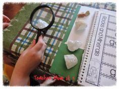 Teacher Mom of 3: Homeschool Learning: Lots of Science!