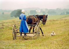 Young Amish Lady helping in the fields~ Sarah's Country Kitchen ~