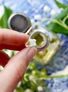 Preserves, Natural Beauty, Silver Rings, Health, Nature, Preserve, Naturaleza, Health Care, Preserving Food