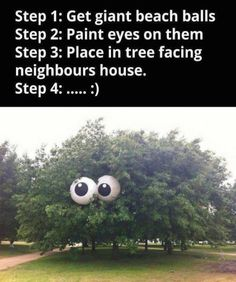Paint eyes on two 2 beach balls and play in tree facing neighbors neighbors house, prank pranks tree looking at them starting This would be a funny prank. clean fun no one gets hurt nothing damaged pranks Funny Cute, Funny Shit, The Funny, Funny Stuff, Crazy Funny, Funny Pranks, Funny Jokes, Awesome Pranks, Funniest Pranks