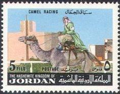 Camel racing.