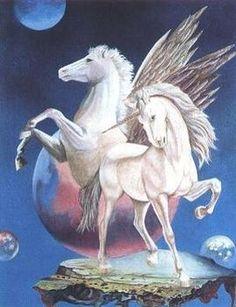 pegasus horse | Pegasus or Unicorns?