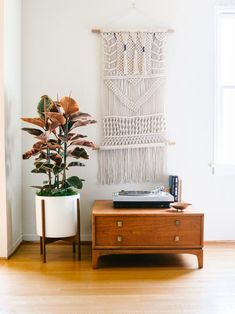 We've got the inside scoop on indoor plants from holistic home consultant and Feng Shui pro, Laura Benko. Easy Garage Storage, Smart Storage, Storage Ideas, Living Room Designs, Living Spaces, Rubber Tree, Rubber Plant, Apartment Living, Hgtv