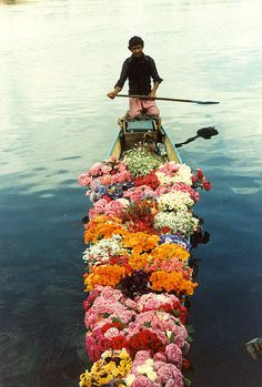 flowers in a boat surrounded by water