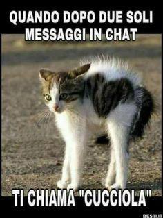Quando dopo due soli messaggi