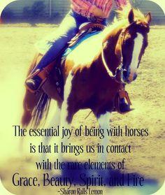Essential Joy of the Horse
