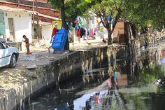Blog da jornalista Olívia de Cássia © : Com saneamento, Alagoas pode criar 3.896 novos emp...