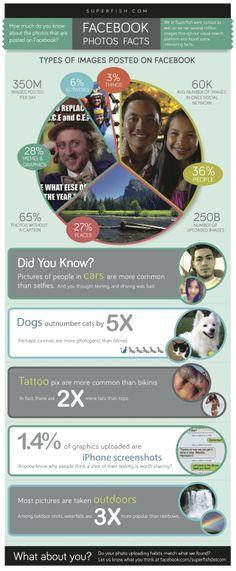 SOCIAL MEDIA -         FaceBook photos facts #infografia #infographic #socialmedia.