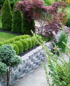 Before-and-afters in Kathy & Kevin's garden in Washington | Fine Gardening