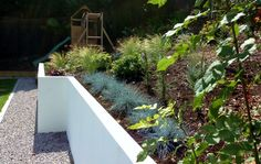 Straight lines and naturalistic planting