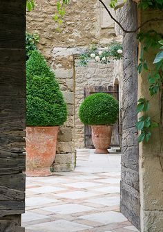 courtyard with topiaries. Home garden inspiration - formal French gardens French Formal Garden Inspiration Formal Gardens, Outdoor Gardens, Pot Jardin, Garden Urns, Walled Garden, Hedges, Dream Garden, Garden Inspiration, Garden Ideas