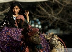 kuchi nomads, one of the unreached people groups in Afghanistan and Pakistan