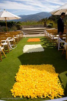 Squares of bright flower petals lined the aisle. How fun!  Stunning Aisle....Create this look with Yellow and Ivory Rose petals available at Flyboy Naturals  www.flyboynaturals.com