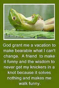 The new *improved* serenity prayer... God grant me a vacation to make bearable what I can't change. A friend to make it funny and the wisdom to never get my knickers in a knot b/c it solves nothing and makes me walk funny.