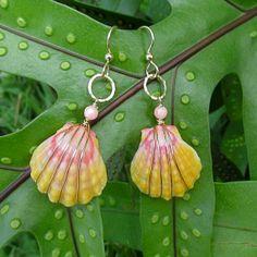 Sunrise Shell Earrings Gold Rare Hawaiian by HanaMauiCreations, $120.00