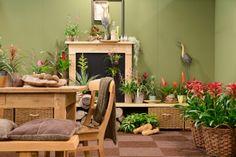 Bromelia Green Rituals van Bromelia Specialist