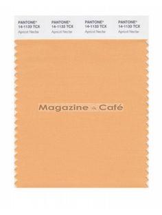 Pantone Smart 14-1133 TCX Color Swatch Card  Apricot Nectar Peach Blush, Paint Shop, New Pins, Textile Patterns, Pattern Wallpaper, Navajo, Pantone, Hue, Orange Color
