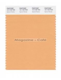 Pantone Smart 14-1133 TCX Color Swatch Card  Apricot Nectar