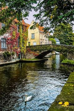 Bruges Belgium And to think you Can be Eating the World's Best Chocolate While Being here! Heaven