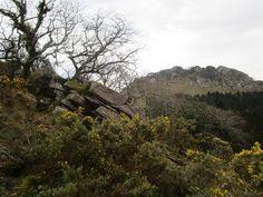 https://flic.kr/p/ETQeDx | Monte Aballarri desde el monte Arlegor