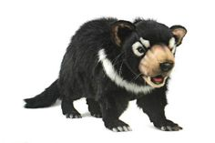 This inspiring Tasmanian Devil, is a 60cm long, soft cuddly toy by the creators of realism - Hansa. Description from worldofbears.com. I searched for this on bing.com/images