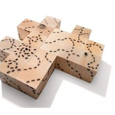 eco-decorative cubes by Uncle Goose / made in USA