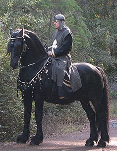 Medieval on Pinterest | King Arthur Medieval Horse and Knight. Charlotte Ou0027Marau0027s & Medieval Horse Costume Pattern (With Breeching) | Ideas and ...