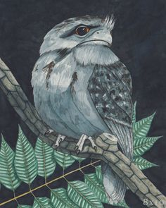 Check out this item in my Etsy shop https://www.etsy.com/listing/471442634/lord-frogmouth