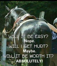 Horses are *always* worth it
