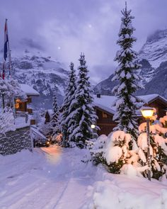 Grindelwald,Switzerland🇨🇭❄️ Winter Wonderland ☃️🎄 Happy New Week Friend's Winter Szenen, I Love Winter, Winter Magic, Winter Christmas, Winter Night, Snow Night, Christmas Images, Winter Travel, Merry Christmas