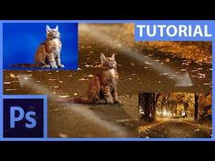 Základy fotomanipulace – maskování a retuše – Photoshop CZ tutorial