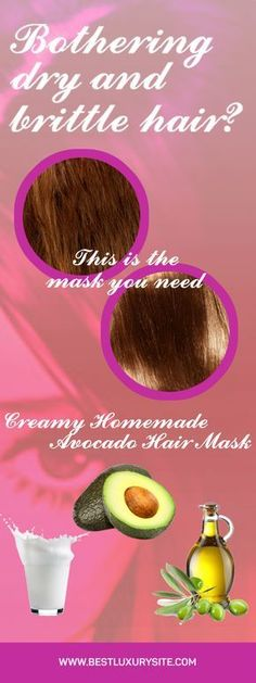 Bothering dry and brittle hair? This is the mask you need – Creamy Homemade Avocado Hair Mask – Best Luxury Site Mask For Oily Skin, Skin Care Masks, Hydrogen Peroxide Skin, Witch Hazel For Skin, Avocado Hair Mask, Brittle Hair, Hair Loss Women, Hair Loss Remedies, Prevent Hair Loss
