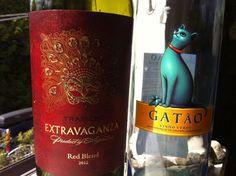 Blend of the Week: Malbec/Bonarda/Syrah + Vinho Verde. http://tastingroomconfidential.com/blend-of-the-week-malbecbonardasyrah-vinho-verde/#.UYF1NI63chM