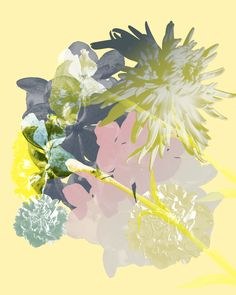 Contemporary photography and artwork Mauren Brodbeck, Loyalland, Untitled 03 Contemporary Photography, Contemporary Art, Filmmaking, Collage, Artist, Artwork, Flowers, Painting, Color