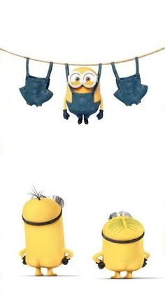 Minions Bob, Minions Images, Minion Pictures, Minions Despicable Me, Minions Quotes, Funny Minion, Minions Minions, Minion Wallpaper Iphone, Disney Phone Wallpaper