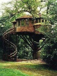 Cabane dans les arbres... ...
