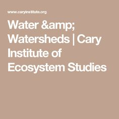 Water & Watersheds | Cary Institute of Ecosystem Studies