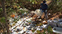 #Postal worker caught #dumping bin after bin of mail in #woods...