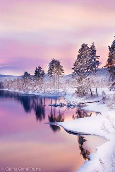 Pin by Donna Raymer Huckaba on Winter wonderland in 2019 Winter Photography, Landscape Photography, Nature Photography, Winter Scenery, Winter Sunset, Winter Magic, Snow Scenes, Winter Beauty, Winter Landscape