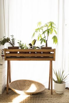 Plant table, probably easy to make with some 2x4s