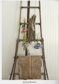 dried flower display