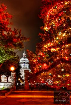 Christmas is a beautiful time to visit Texas! Austin Texas Capitol Christmas Tree