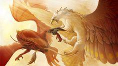 Dragon contra grifo
