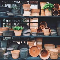 There's no such thing as too much terracotta in our world. Image via instagram MikeSmith. #terrainsignsofspring #regram
