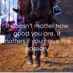 Horses are one of my greatest passions.