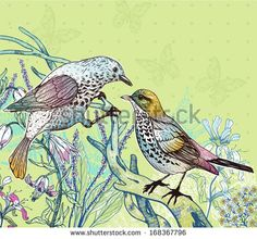 vector illustration of wild birds and blooming plants