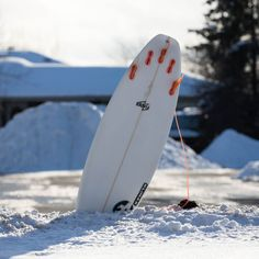 Image result for surf board in snow